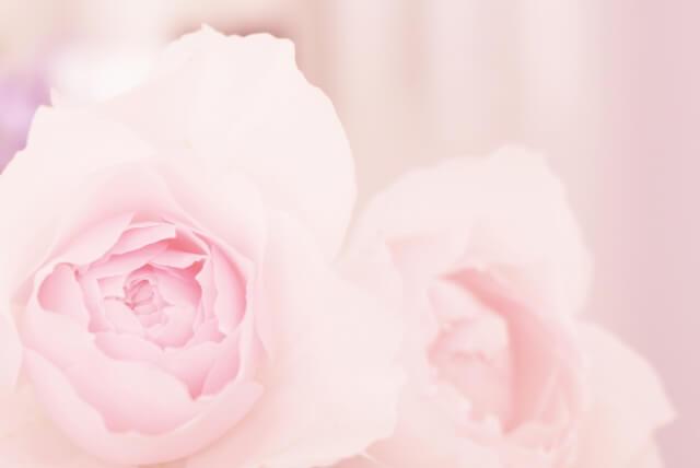 40代未婚おひとりさま女性のための美的終活セミナー